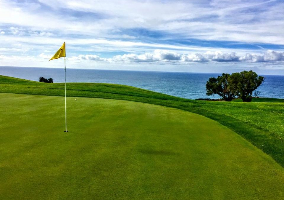 Torrey Pines North Reopens After Getting Teched Up